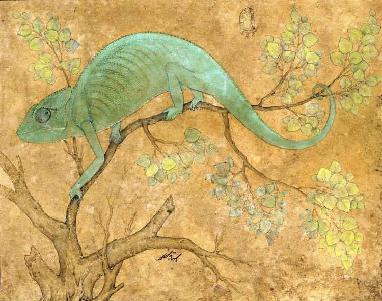 A Chameleon. Ustad Mansur. 1612.